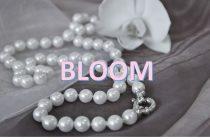 BLOOM(ブルーム)ってどんなアクセサリーブランドなの?【お花や恐竜の誕生石ネックレスも販売しています】