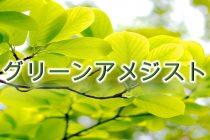 2月の誕生石「グリーンアメジスト(プラシオライト)」の意味や色、そして産地をわかりやすく解説