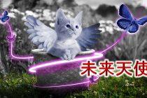 「未来天使」ってどんなアクセサリーブランドなの?【猫の誕生石ネックレスがとても可愛い!】